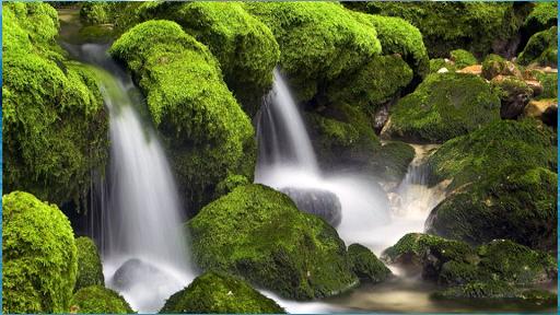 玩娛樂App|享受大自然壁紙免費|APP試玩