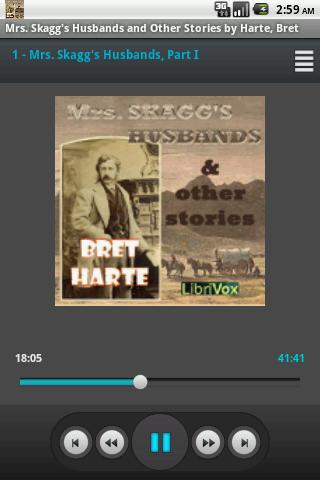 Audio Book Mrs Skaggs Husbands