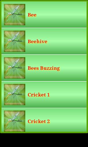 大自然昆蟲的聲音