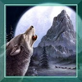 Hungry Wolf Sounds HD LWP
