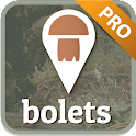 Bolets «Mushrooms» icon