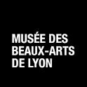 Musée des Beaux-Arts de Lyon icon