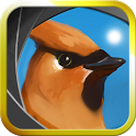 Camera Birds™ icon