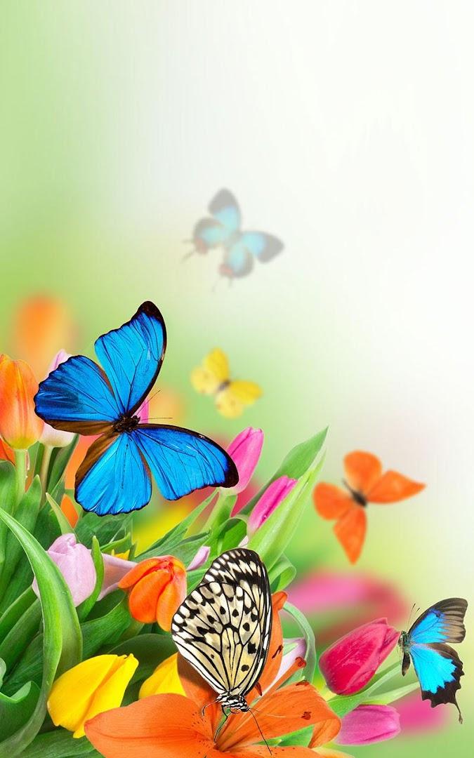 Sfondi farfalle per cellulare fk26 regardsdefemmes for Immagini farfalle per desktop