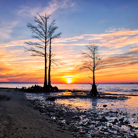 Along the James by James Gramm - Landscapes Waterscapes ( clouds, sand, sky, colors, silhouettes, reflections, trees, sunrise, beach )