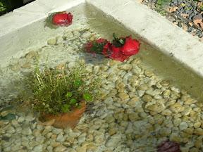 水の上の花