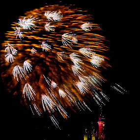 wishes by Brett Kurtz - City,  Street & Park  Amusement Parks ( photos, magic, kingdom, wishes, walt, nola, fireworks, by, castle, disney, world, cinderella )