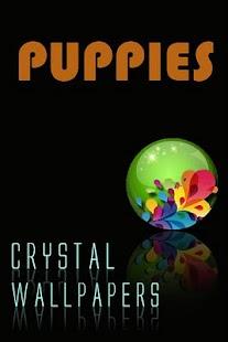 Crystal Puppies Wallpapers - screenshot thumbnail