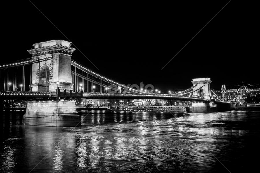 Chain Bridge, Budapest  by CA Eccles - Black & White Buildings & Architecture ( illuminated, hungary, budapest, night photography, suspension bridge, chain bridge, suspension, bridge, architecture, danube, danube river, historic,  )