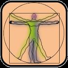 Test de Anatomía icon