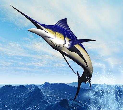 玩免費解謎APP|下載極端的捕鯊 Shark app不用錢|硬是要APP