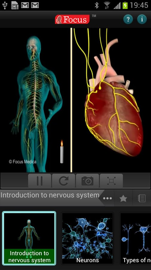 Anatomy & Physiology-Animated- screenshot