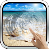 Interactive Sea Shell