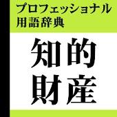 知的財産プロフェッショナル用語辞典(「デ辞蔵」用追加辞書)
