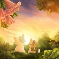 Kitten Sunset Wallpaper Free 1.2