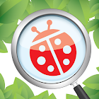 Alive-Bugs3D icon