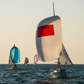 Race to the Finish by Nathaniel Beighley - Transportation Boats ( saling, nikkor, d600, nikon, sail race,  )