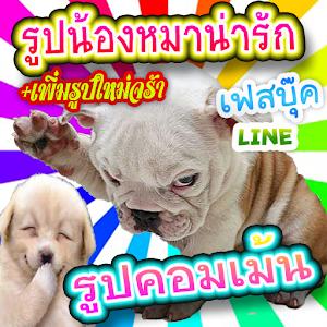 Apk game  คอมเม้นเฟสบุ๊ค น้องหมา   free download