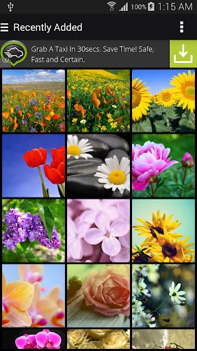 Flowers Gardens Wallpapers