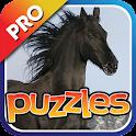 Horse Puzzles Pro icon