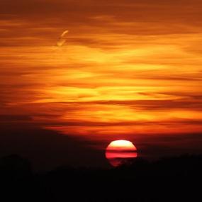 by Iain Weatherley - Landscapes Sunsets & Sunrises ( wizzard, sky, sunset, beautiful, cloud, beautiful sky, orange sky, sun,  )