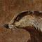 lukestone