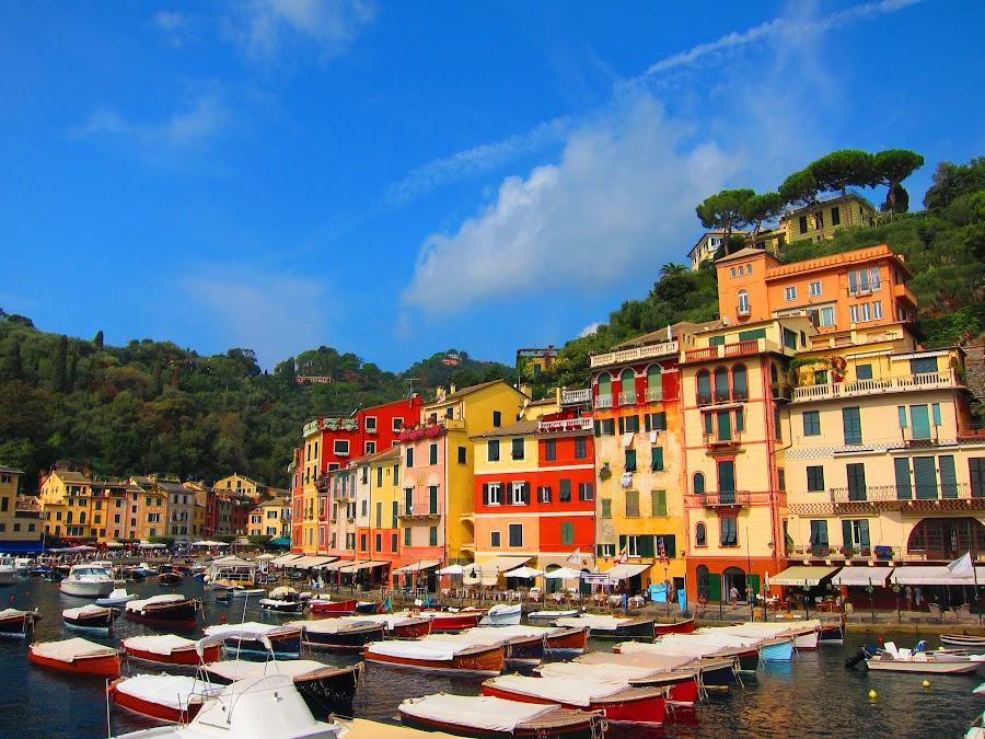 Portofino Harbour, Italy by Rob Taylor - Buildings & Architecture Public & Historical ( old, harbor, colors, boats, portofino, town,  )