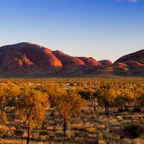Kata Tjuta at Sunrise by Matt Simner - Landscapes Mountains & Hills ( olgas, kata tjuta, sunrise, uluru, northern territory )