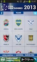 Screenshot of Copa Libertadores 2013