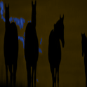 Sunset Horses LWP icon