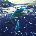 Dolphin Moonlight icon