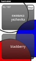 Screenshot of Learn Russian Deluxe