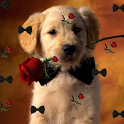 Puppy Live Wallpaper Original icon