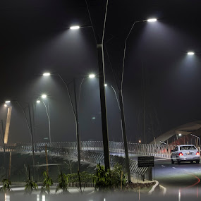 Dreamy Night by Qamrul Hassan Shajal - City,  Street & Park  Street Scenes ( car, dreamy, single, street, driving, lamppost, road, midnight, lamp, trees, night, light, alone )