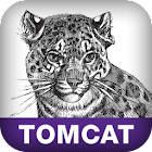 Tomcat Manager [DONATE] icon