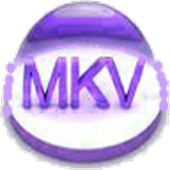Online Local MKV Video Player