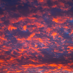 sunset clouds by Keren Woodgyer - Landscapes Sunsets & Sunrises ( skyline, tranquil scene, wide view, vibrant sunset, sky, nature, no people, rodborough, travel destinations, travel locations, clouds, orange, horizon, cloudscape, sea, vacations, dusk, holiday, red, winter, blue, sunset, outdoors, background, trees, cloud, summer, day, sunrise )