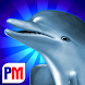 Dolphins Dice Slots icon