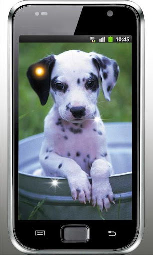 Plush Puppy HD Live Wallpaper