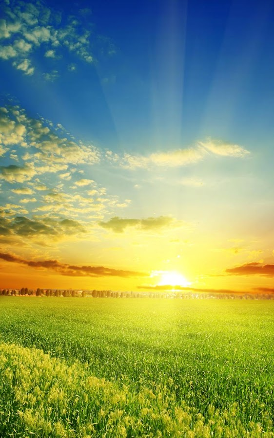 Perfect Sunrise Live Wallpaper  Android Apps on Google Play
