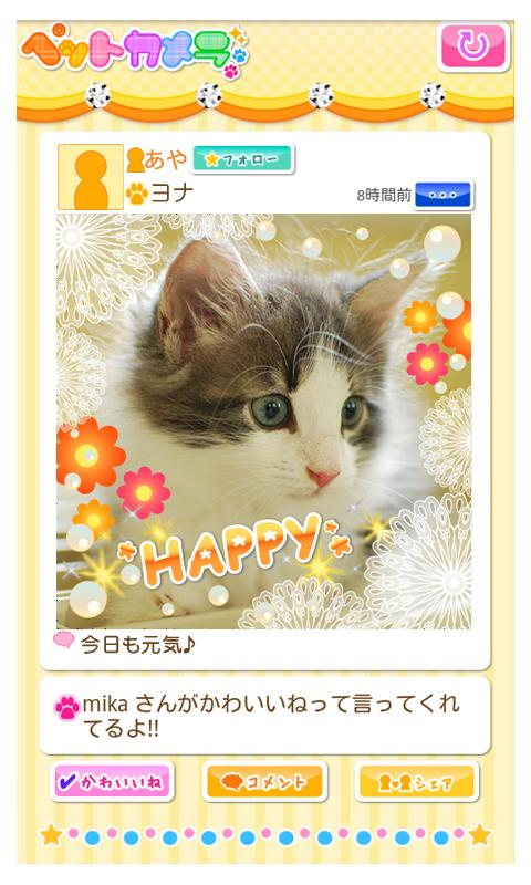 Petcamera- screenshot