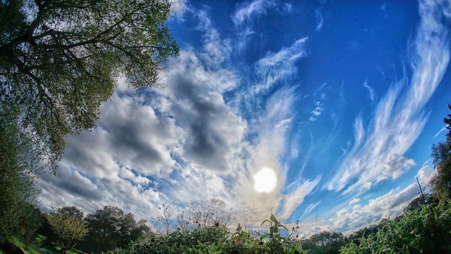 Cloudland Dreams by Scott Walker - Landscapes Cloud Formations ( clouds, fisheye, sunset, cloud, angels, spring )