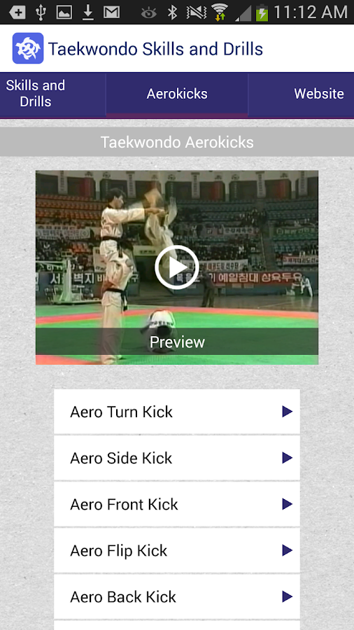 Taekwondo Skills and Drills- screenshot