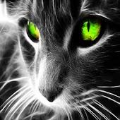 3D cat 009