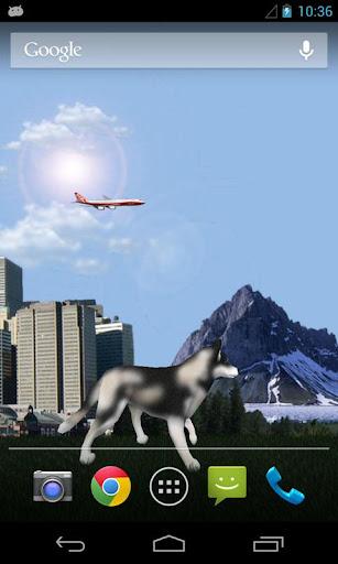 Dog Husky Traveling 3D LWP
