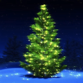 Download Christmas Music Tree Playlist APK on PC