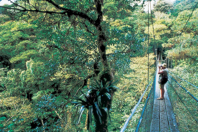 Take a trip to Costa Rica on a Windstar Cruises sailing and get up-close shots of its tropical rainforests.