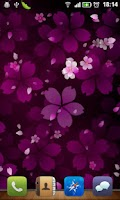 Screenshot of Sakura Falling Live Wallpaper