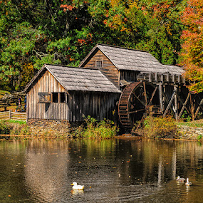 by Walter Farnham - Buildings & Architecture Public & Historical ( mill, mabry, color, fall, pond,  )