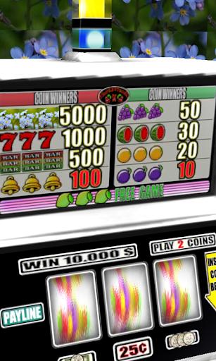 免費紙牌App|3D Forget-me-not Slots - Free|阿達玩APP